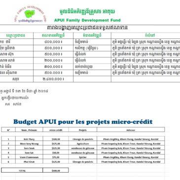 APUI Micro-Crédit